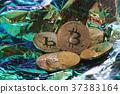 金币 钱 钱币 37383164