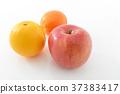 橙色 橘子 橙子 37383417