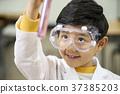 초등학생,어린이,한국인 37385203
