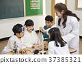 초등학생,교사,한국인 37385321