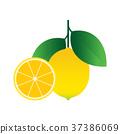lemon, ripe, organic 37386069