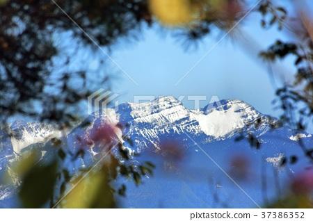 台灣冬天雪山山脈白雪 37386352