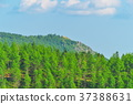 landscape, scape, scene 37388631