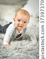 Portrait of baby boy 37397370