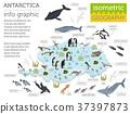 Antarctic, Antarctica,  flora and fauna map 37397873