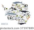 Antarctic, Antarctica,  flora and fauna map 37397889