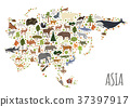 Flat Asian flora and fauna map constructor  37397917