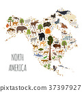 North America flora and fauna map, flat elements 37397927