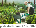 Florist-woman working with seedlings 37398902