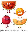 vector,fruit,watermelon 37399405