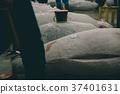 fish market 37401631