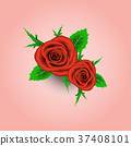 Red rose and leafs on pink background.  37408101