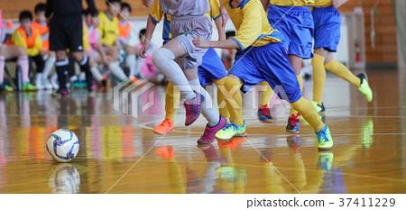Futsal 37411229