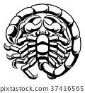 Scorpio Scorpion Zodiac Astrology Sign 37416565