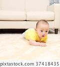little child, toddler, baby 37418435