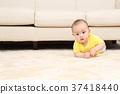 baby, infant, lifestyle 37418440