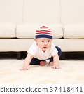 infant, baby, sit 37418441