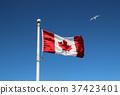 국기, 갈매기, 하늘 37423401