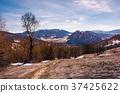 mountainous scenery of Uzhansky National Park 37425622