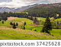 agricultural fields on grassy slopes in springtime 37425628