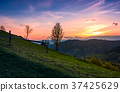 grassy slope rural area at sunset 37425629