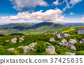 boulders on grassy hill in summer 37425635