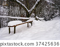 wooden bench in snowy outdoors 37425636
