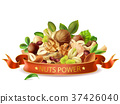Vector realistic nuts power banner template 37426040