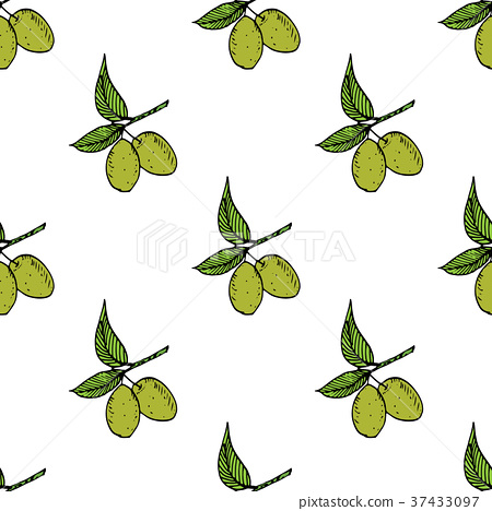 Olive branch seamless pattern. Natural background 37433097