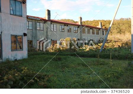 廢物公寓 37436520