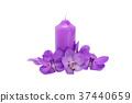 Purple Orchid flower. 37440659