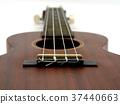 Close up brown guitar. 37440663