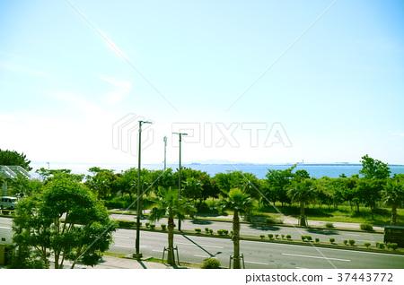 해안 풍경 37443772