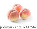 桃子 水果 初夏 37447567