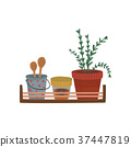 Herbs, spices containers and kitchenware utensil 37447819