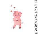 หมู,หัวใจ,ลูกหมู 37447983