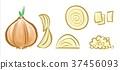 양파, 통썰기, 둥글썰기 37456093