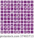 purple grunge 100 37463713