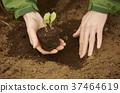 농업 모종을 심는 외국인 남성 37464619
