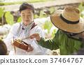 農業休息午餐外國人 37464767