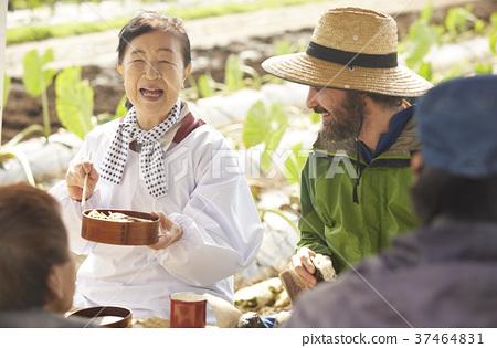 農業休息午餐外國人 37464831