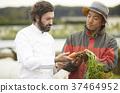 农民和外国厨师 37464952