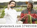 农民和外国厨师 37465008
