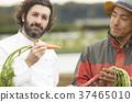 农民和外国厨师 37465010