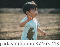 little, child, toddler 37465243