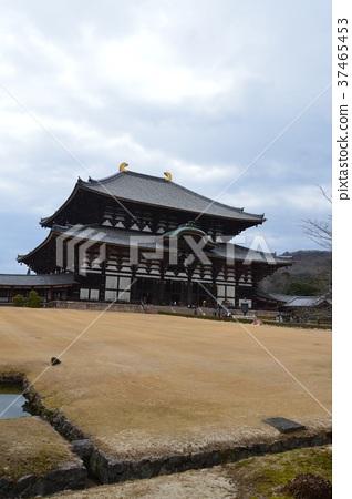도다 이사의 '대불'(나라현 나라시 雑司 도시) 37465453