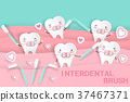 cute cartoon tooth 37467371
