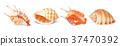 Set of vector seashells 37470392