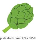 녹색, 당근, 벡터 37472059
