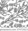 lavender seamless pattern 37472623